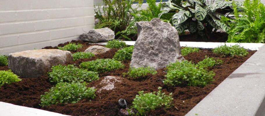 Garden concept - Jardin hydroponique d interieur ...